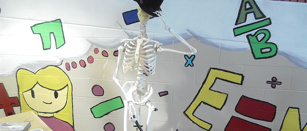 A skeleton with QR codes allows students to scan the human body.