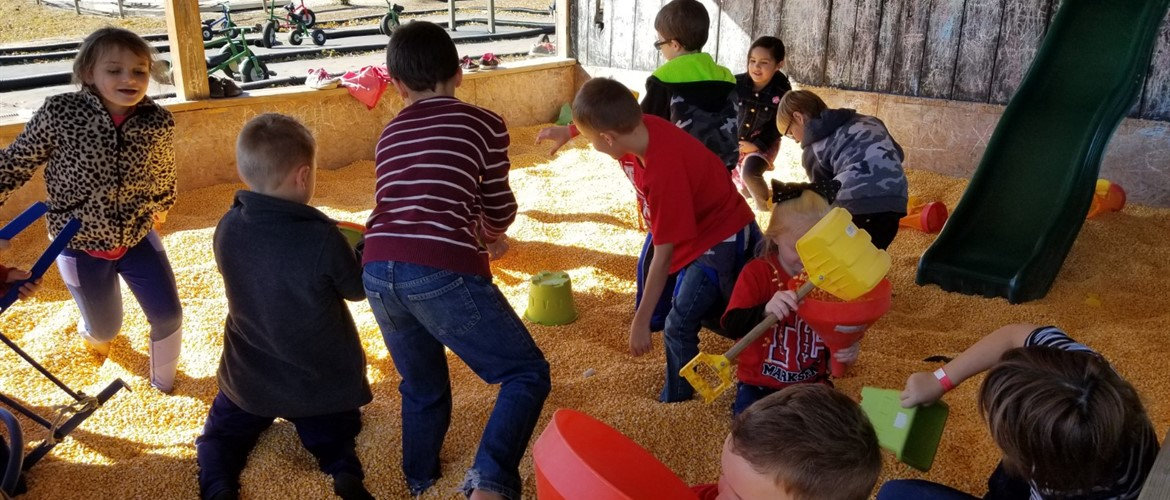 Second grade playing in a grain sandbox.